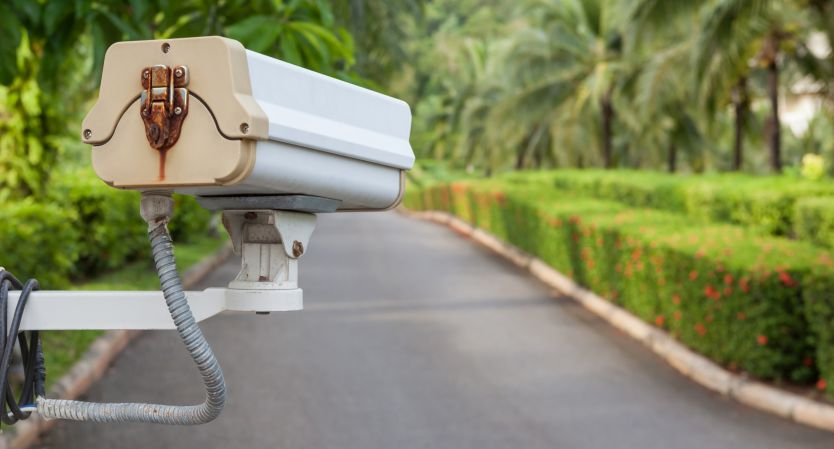 Security camera, CCTV hangs in garden for surveillance