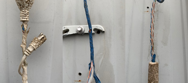 Actual wiring damage from rodents